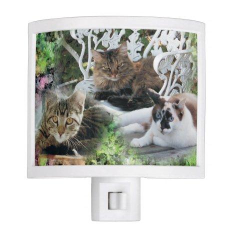 personalized photo pet night light