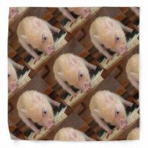 Personalized Pig Bandana