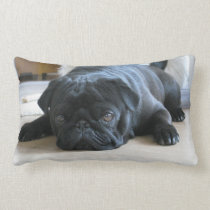 Personalized Pug Pillow, black pug puppy, cute Lumbar Pillow
