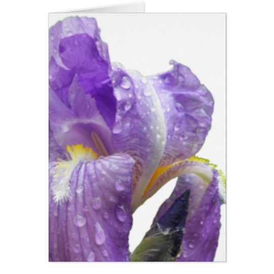 Personalized Purple Iris Mother's Day Card