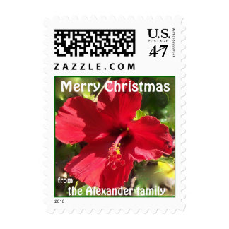 Personalized Red Flower Christmas Greetings Postage