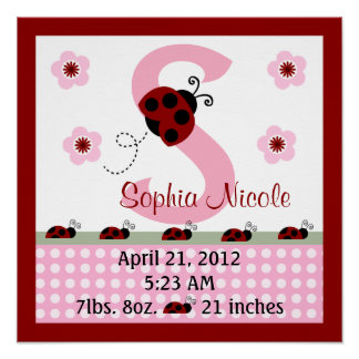Personalized Red Ladybugs/Flower Birth Info Poster