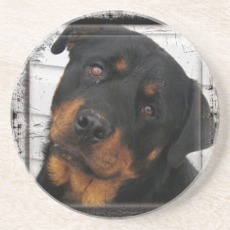 Personalized rottweiler drink coaster