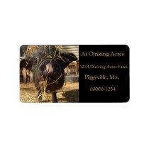 Personalized Silly Black Mini Pig Address Labels