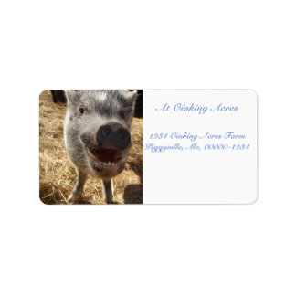 Personalized Smiling Mini Pig Address Labels