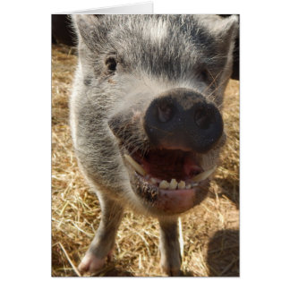 Personalized Smiling Mini Pig Greeting Card, Card