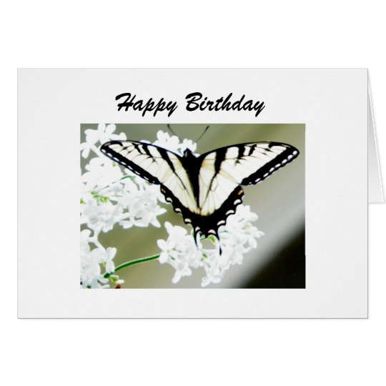 Personalized Swallowtail Butterfly Photo Card