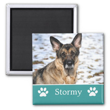 Personalized Teal Pet Photo Magnet