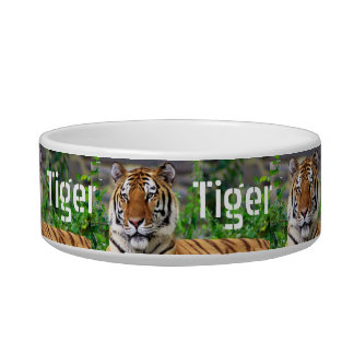 Personalized TIger Cat Dish