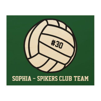 Personalized Volleyball Team, Player Name & Number Wood Wall Art