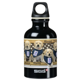 Personalized Weather Bench SIGG Traveler 0.3L Water Bottle