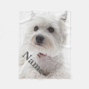 478899442e Make Your Own Dog Fleece Blanket - Bundle Up In Yours Today!