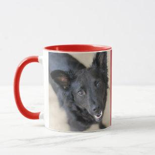 dog daycare coffee travel mugs zazzle