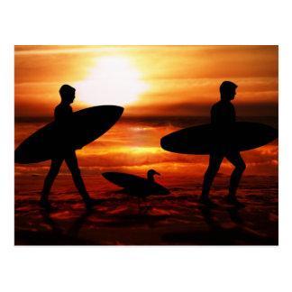 Personas que practica surf de la puesta del sol