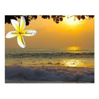 Personas que practica surf hawaianas postal