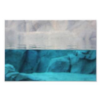 """""""Perspectiva"""" 12x8 del león marino Impresión Fotográfica"""