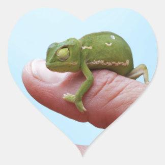 Perspectiva de los camaleones del bebé pegatina en forma de corazón
