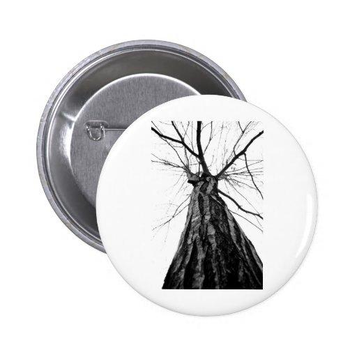 Perspectiva de un árbol pin redondo 5 cm