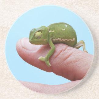 Perspectiva del camaleón del bebé posavasos diseño