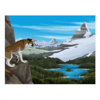 Perspectiva del puma postales