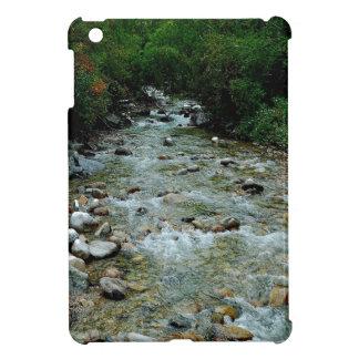 Perspectiva salvaje del río del agua