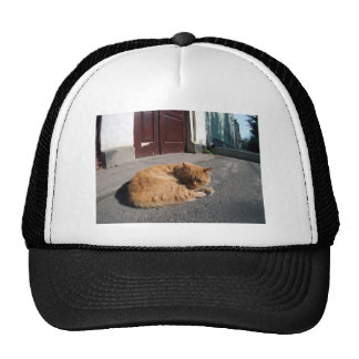 Perspective distortion view on the lonely and home trucker hat