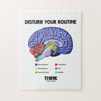 Perturbe su rutina piensan (la anatomía del cerebr puzzle