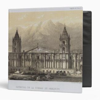 Peru 22 vinyl binder