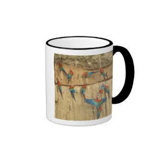 Peru, Amazon River Basin, Madre de Dios Coffee Mug