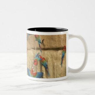 Peru, Amazon River Basin, Madre de Dios Two-Tone Coffee Mug