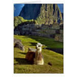 Peru, Andes, Andes Mountains, Machu Picchu, 2 Greeting Cards