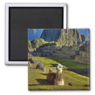 Peru, Andes, Andes Mountains, Machu Picchu, 2 2 Inch Square Magnet