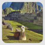 Peru, Andes, Andes Mountains, Machu Picchu, 2 Stickers