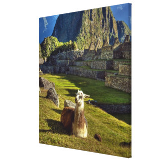 Peru, Andes, Andes Mountains, Machu Picchu, Stretched Canvas Print