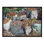 Perú-Tierra de patatas Tarjetas Postales