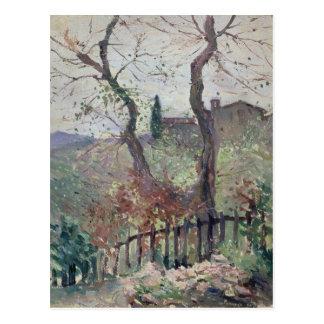 Perugia, Umbria, 1894 Postcard