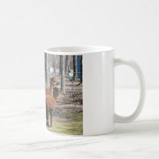 Peruvian Alpaca Family - Vicugna pacos Coffee Mug