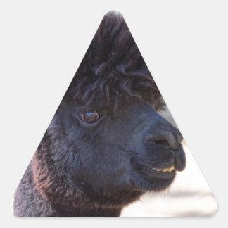Peruvian Alpaca With Crazy Hair 2 Triangle Stickers