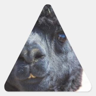 Peruvian Alpaca With Crazy Hair Triangle Sticker