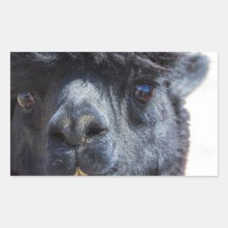 Peruvian Alpaca With Crazy Hair Sticker