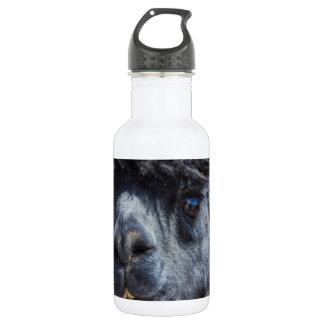Peruvian Alpaca With Crazy Hair Water Bottle