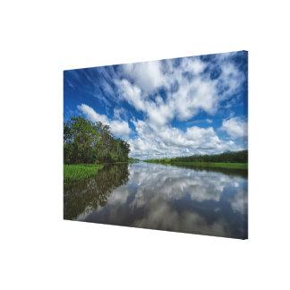 Peruvian Jungle Reflections Canvas Print