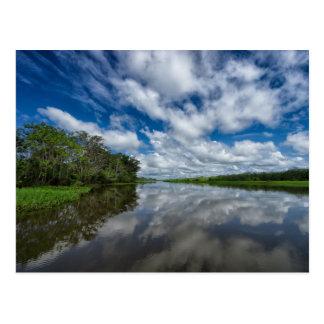Peruvian Jungle Reflections Postcard