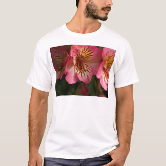 Peruvian lily (Alstroemeria aurea) T-Shirt