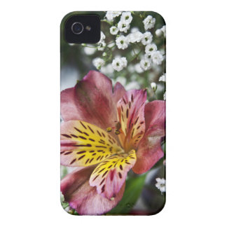 Peruvian Lily and gypsophila flower iPhone 4 Case
