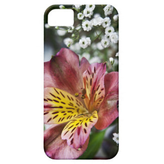 Peruvian Lily and gypsophila flower iPhone 5 Case