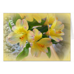 Peruvian Lily Cards
