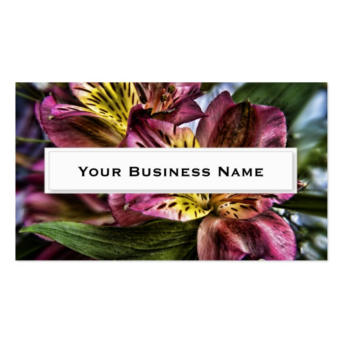 Peruvian lily flower Business Cards