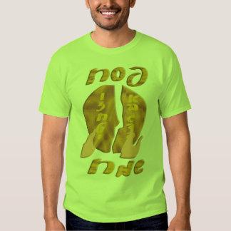 Pesach Sameach T-shirt