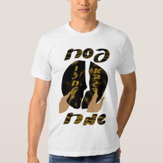 Pesach Sameach T Shirt